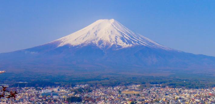 自由鳥日本外遊數據日費Birdie's Japan Travel Data Day Pass